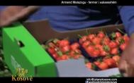 Armend Malazogu fermer i suksessh�m