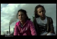 �The Kingdom of Coal� documentary